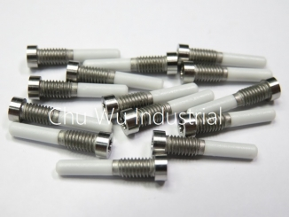 Electronic Custom Made Screw
