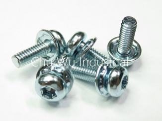 SEMS screw - sprcial washer 1